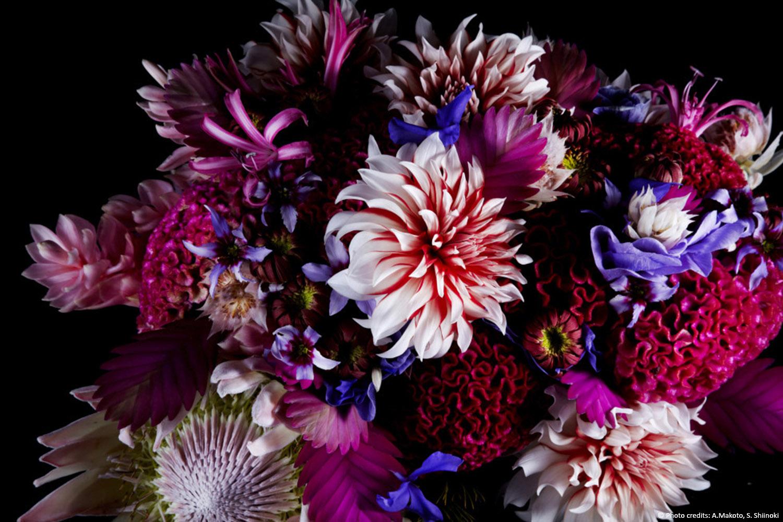Questa immagine floreale è il tema conduttore e il concept di tutta la casa. Ha influenzato la palette colori dell'appartamento, è stata utilizzata per i vetri del bagno e il suo disegno ricalca nelle linee la sagoma dei fiori utilizzata per i 3 pannelli tratta da Encyclopedia of Flowers di A. Makoto, Shiinoki