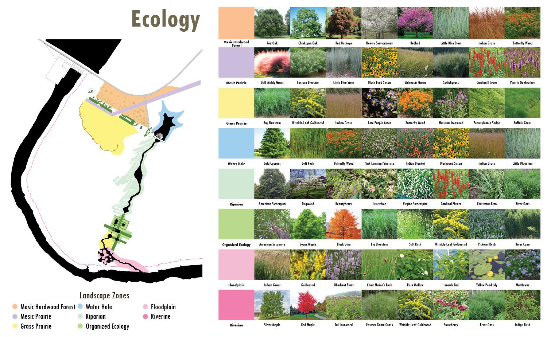 Ecology University of Arkansas Community Design Center}