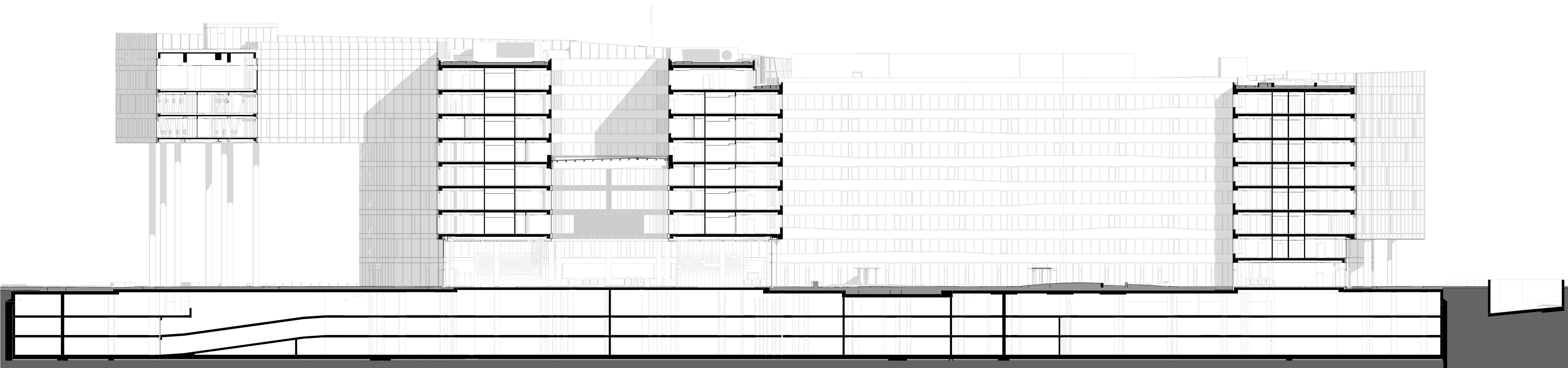 Longitudinal Section TIBA Architects Studio kft}