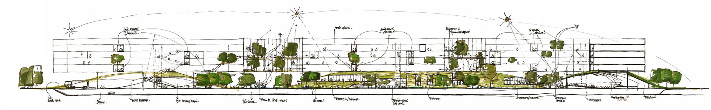 Conceptual Section Sketch Ali Hiziroglu}