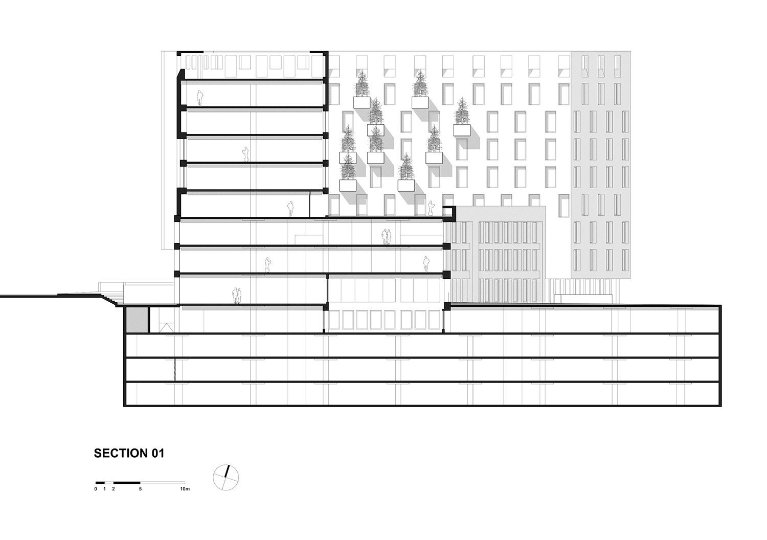 SECTION 01 GONZALO MARDONES ARQUITECTOS}