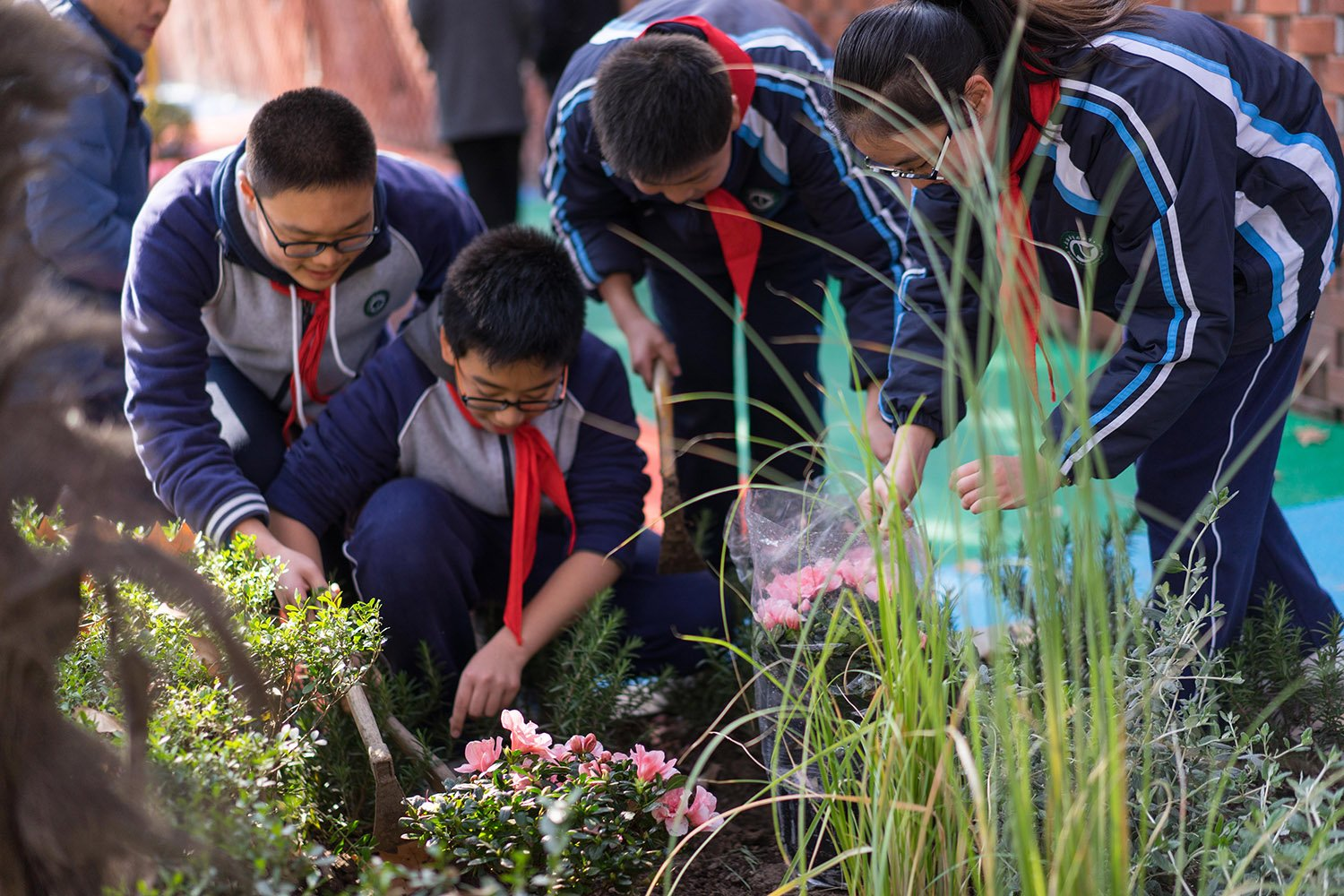 Community-based processes and participatory engagement of middle school students during the planting of the new greenery. The playful public space become place of education and knowledge }