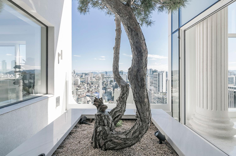 Rooftop garden Sergio Pirrone
