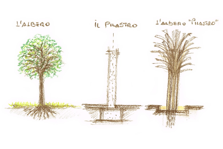 Pilastri Albero Mei e Pilia Associati}