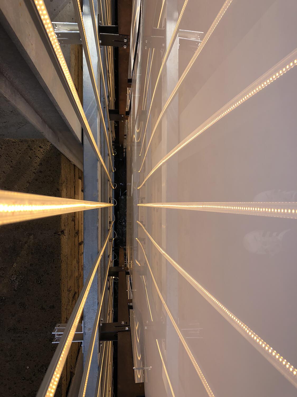 Dettaglio interno led-plexiglass Andrea Greco}