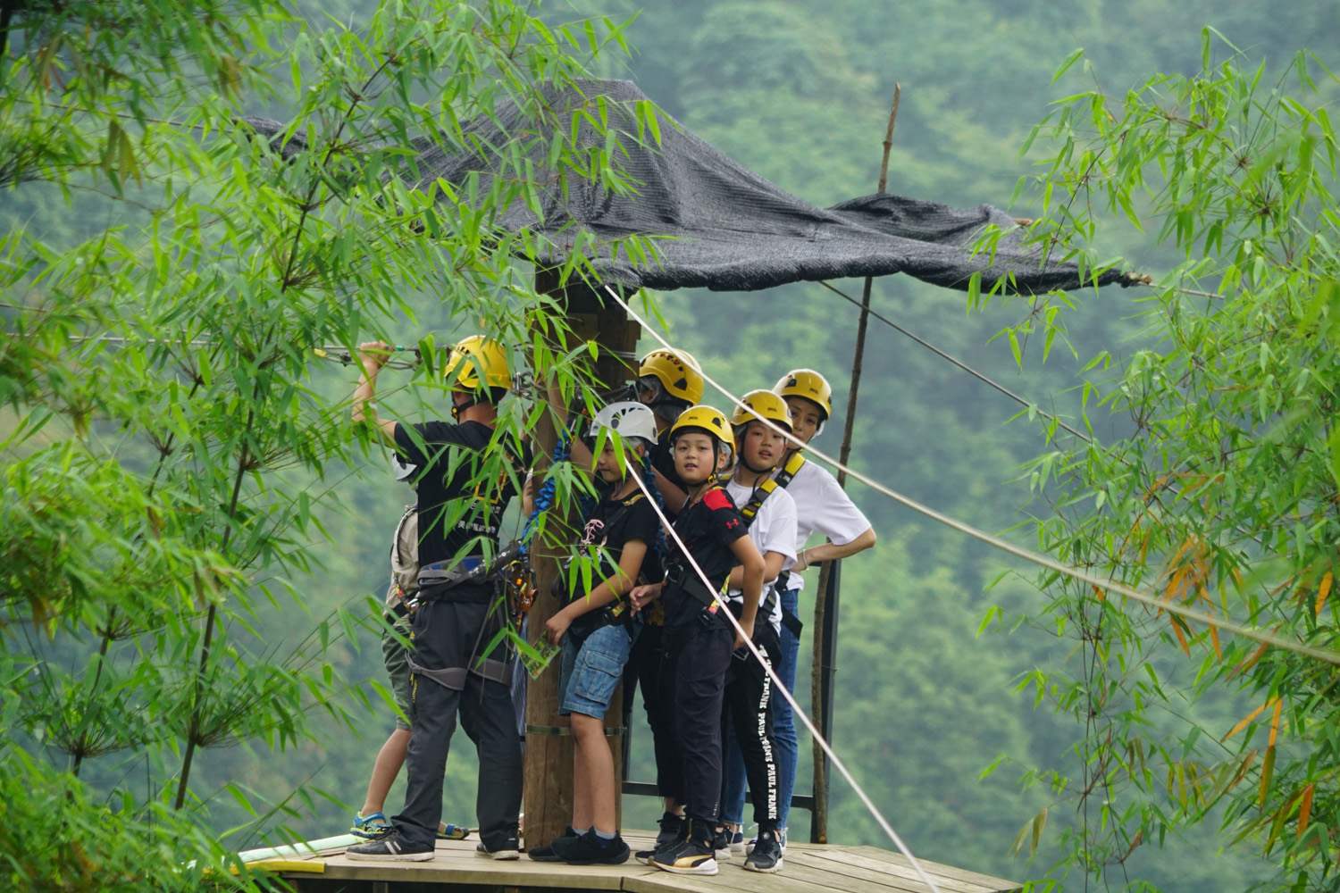 Zip line trip Photo by REGALIA GROUP