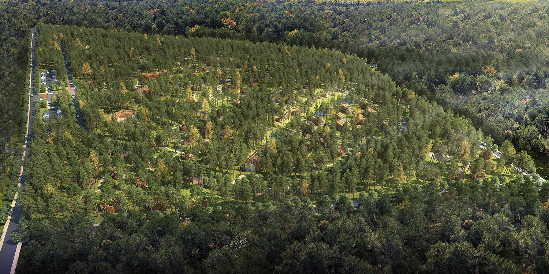 aerial rendering-02 with trees rj models