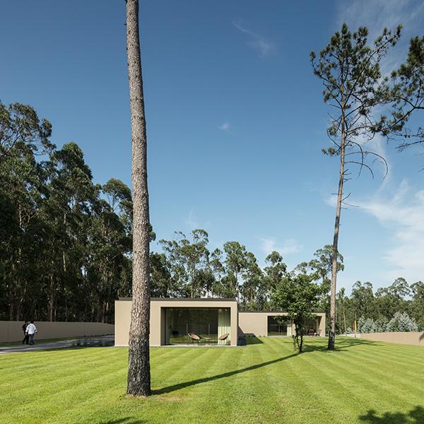Raulino Silva Architect