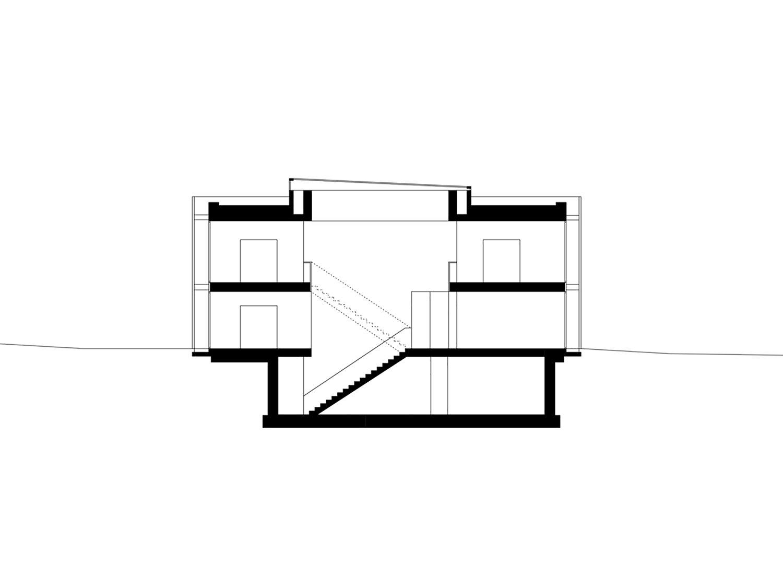 Section Dietrich | Untertrifaller Architekten ZT GmbH}
