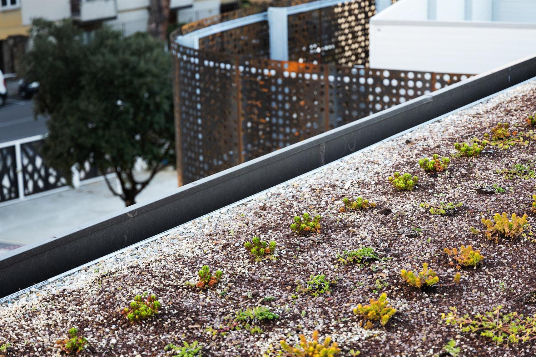 Dettaglio copertura verde Andrea Zanchi
