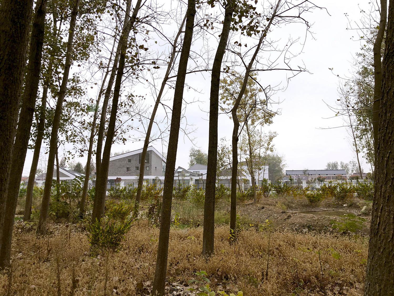 scenery of surrounding nature HAO Hongyi}