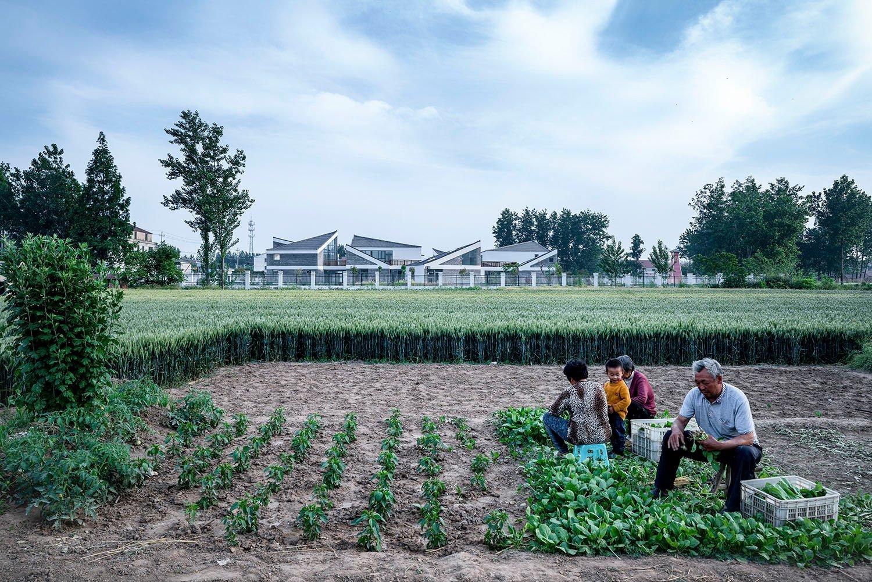 view of kindergarten from nearby harvest fields 3 WU Qingshan