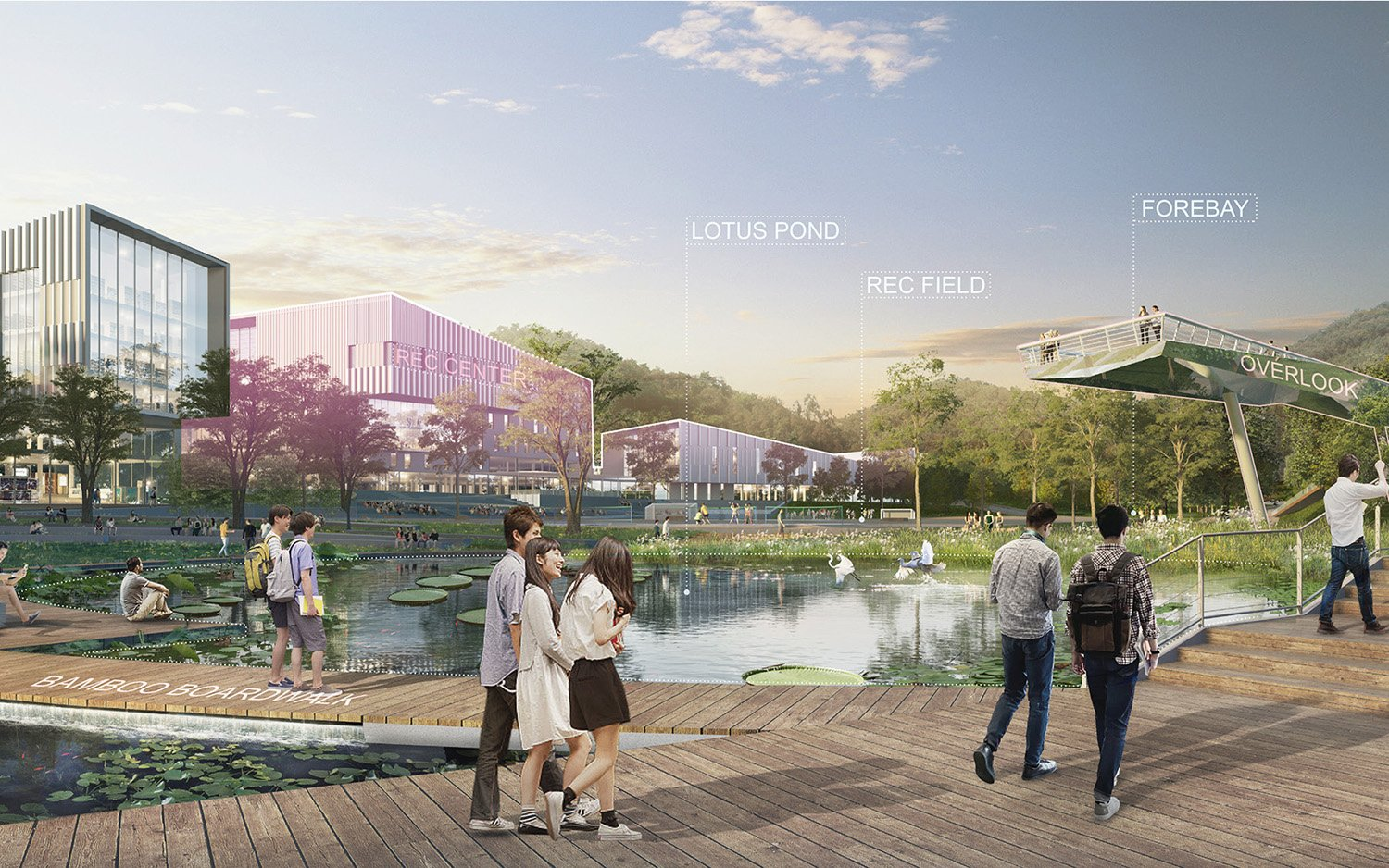 A popular landscape amenity, the lotus pond also provides important ecosystem services such as filtering surface runoff from the adjacent recreation fields. SASAKI}