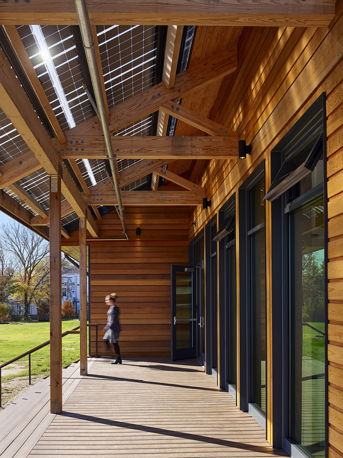 Warm materiality and dappled light welcome users ©Tom Holdsworth