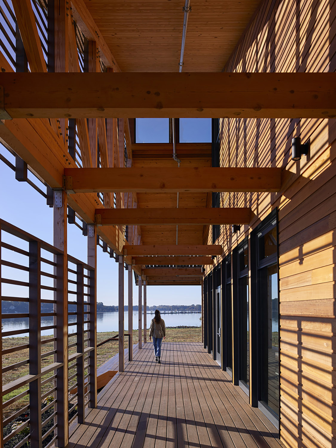 East porch featuring exposed wood structure and filtered daylight ©Tom Holdsworth