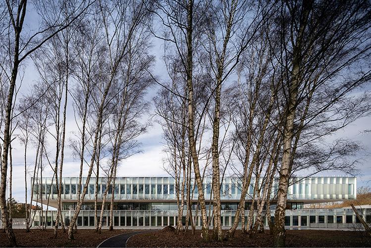 Transparant and monolithic façade Fernando Guerra