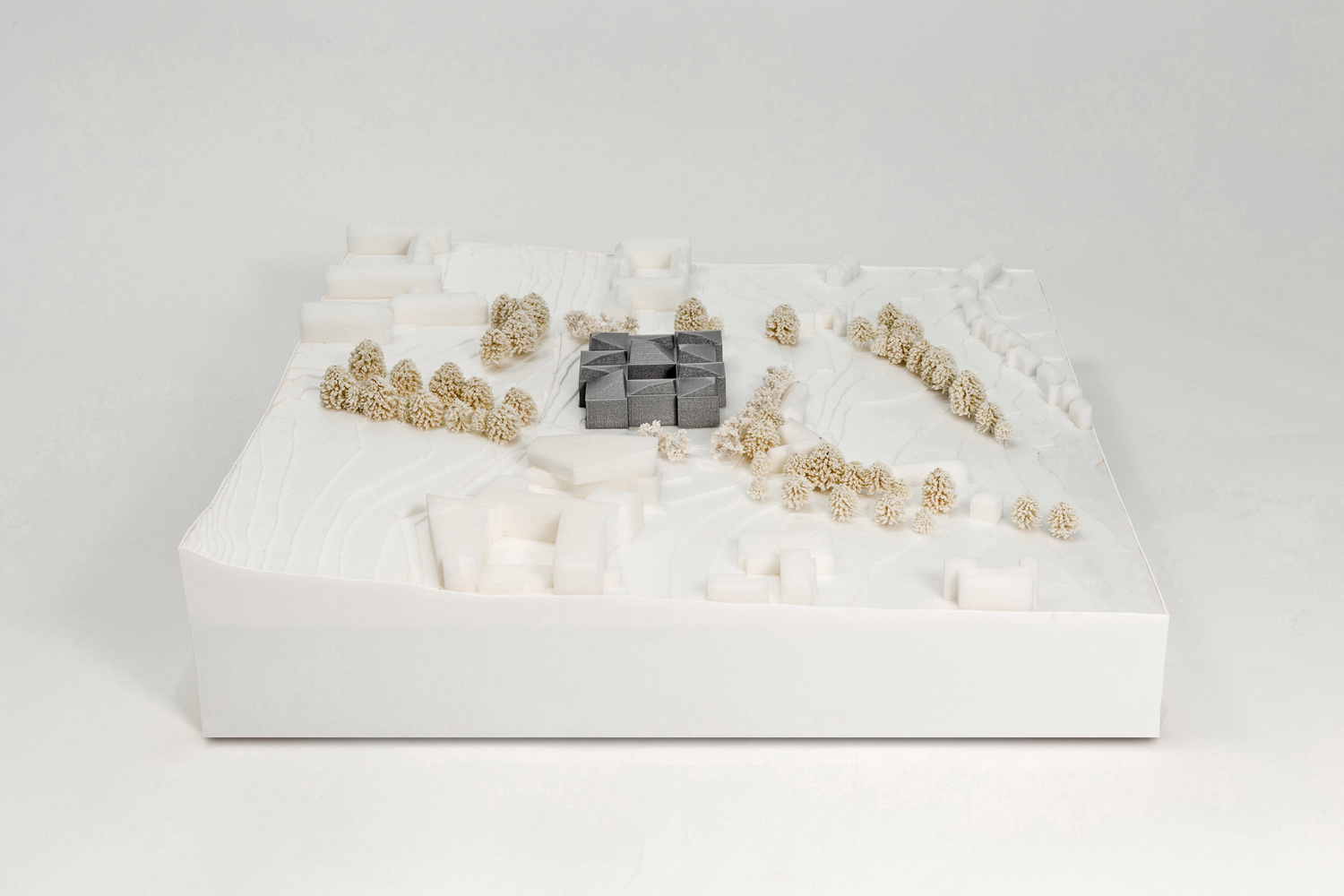 Concept Model II FaulknerBrowns Architects}