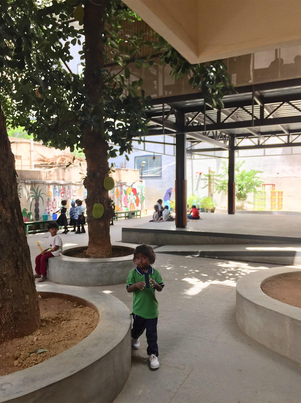 Plinth around the existing trees Soumitro Ghosh