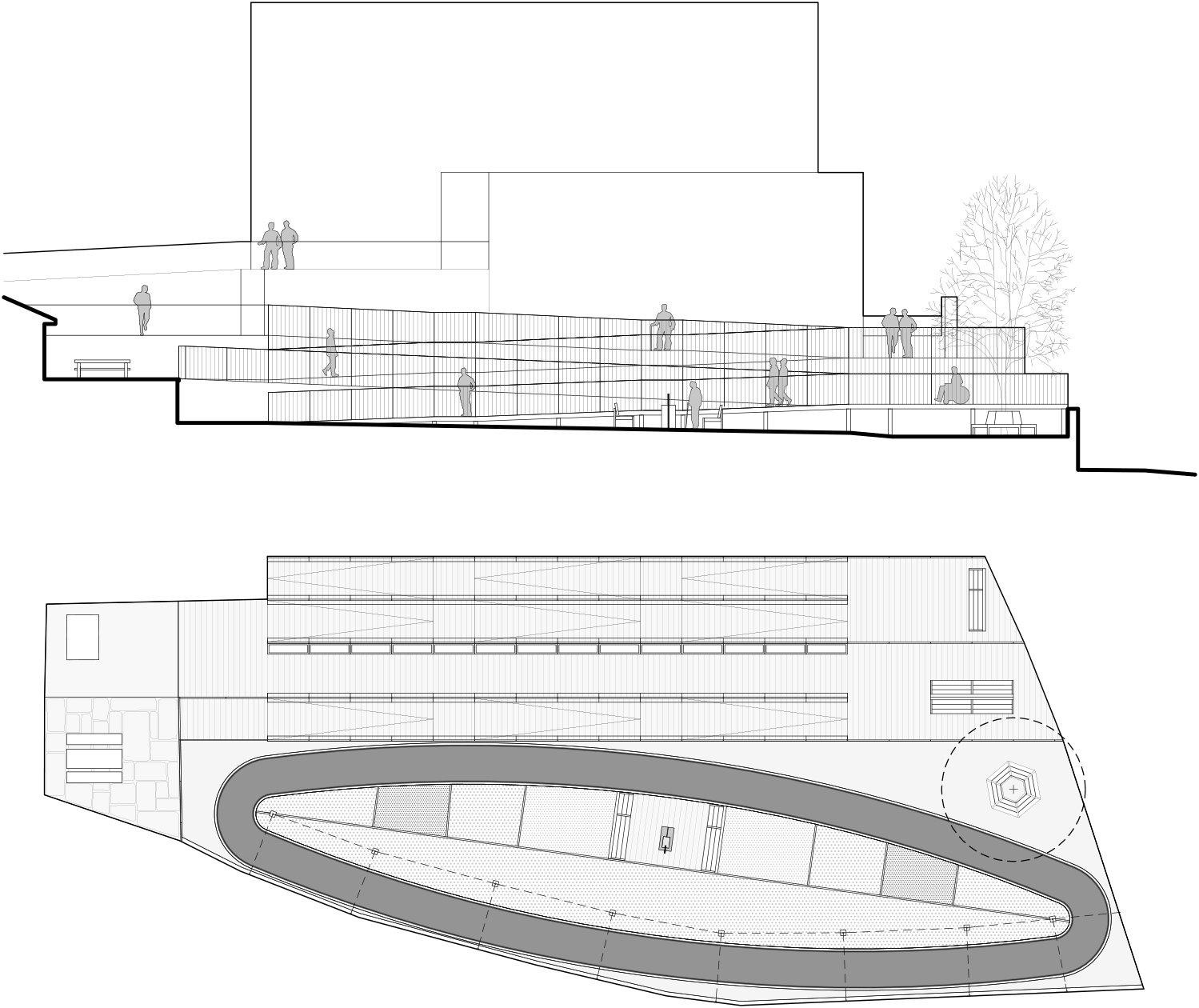 plan and section Enrico Sassi Architetto}