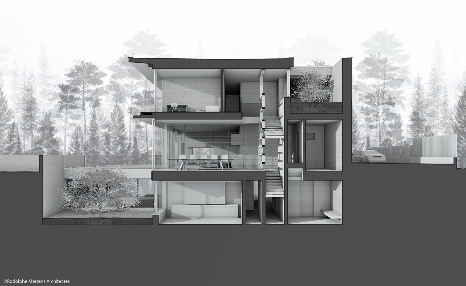 section through dining room area and patios Rodolphe Mertens Architects}