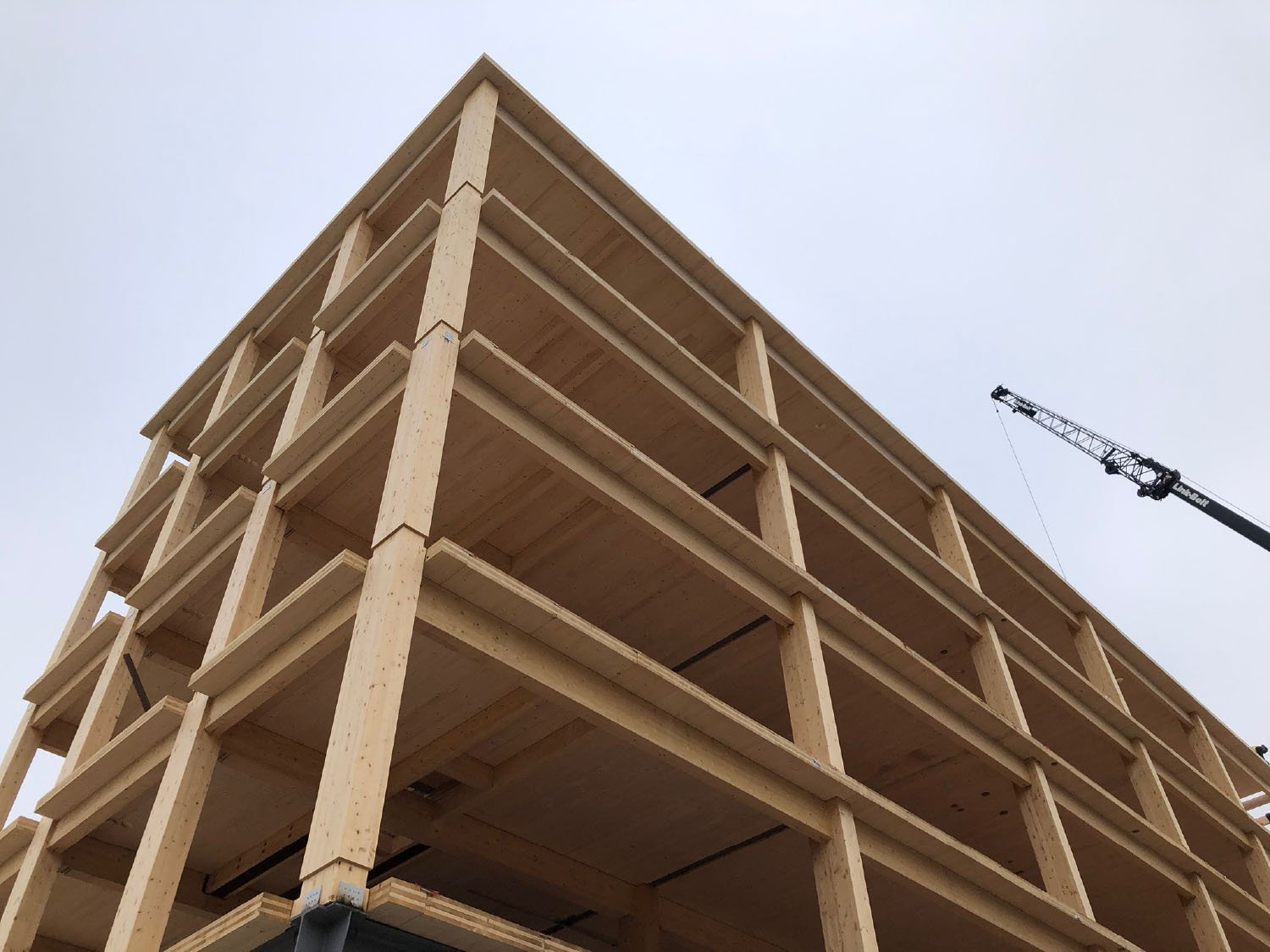 Construction Photo Showing Timber Structure Leers Weinzapfel Associates}