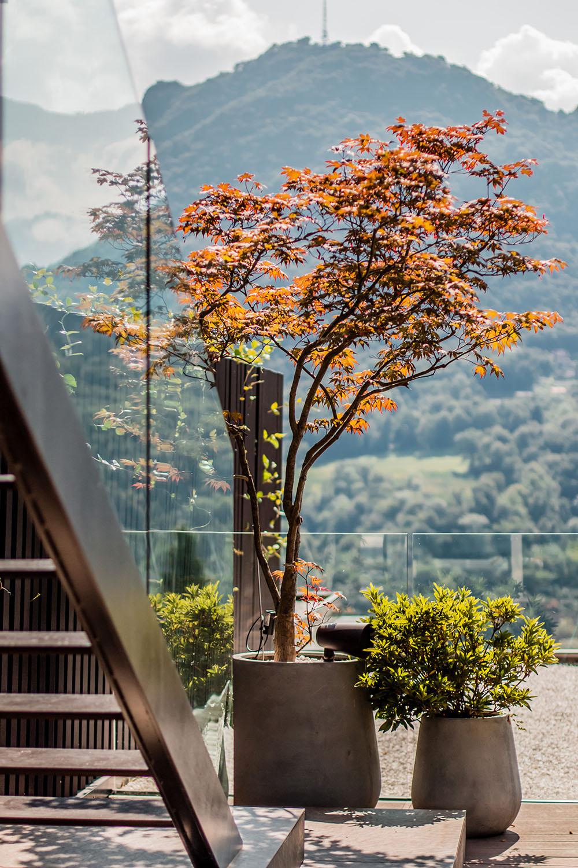 Private Terrace View Giacomo Carena