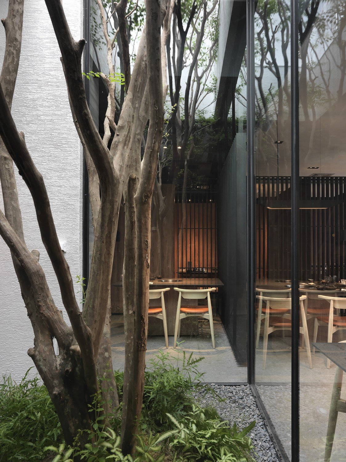 These spaces are like large terrariums that make people feel like they are outside enjoying a fine-dining experience. Moooten Studio / Qimin Wu