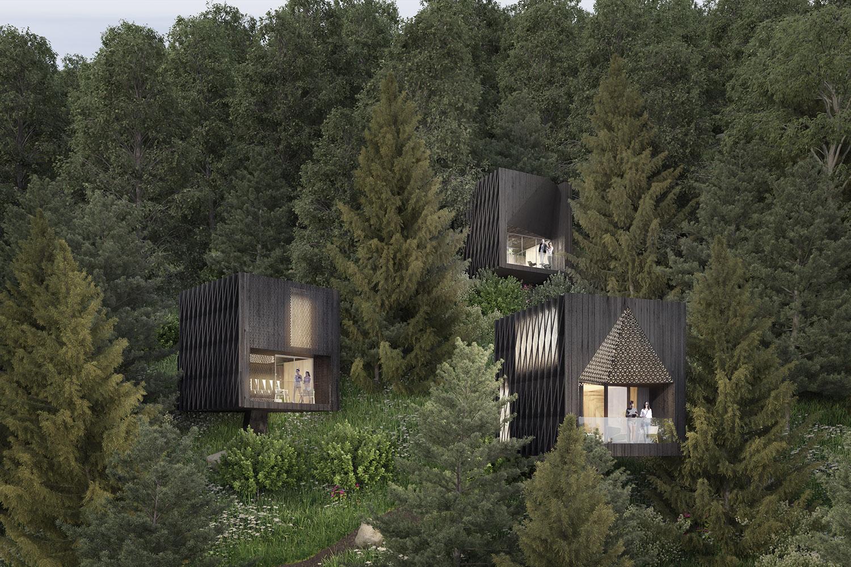 rendering case sugli alberi studio raro