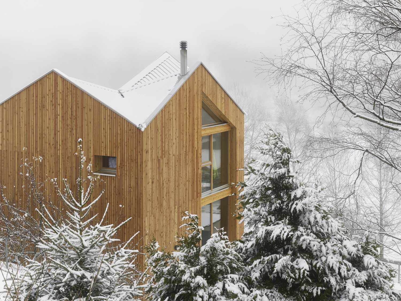 Swisshouse XXXV_Roof Fabrice Fouillet