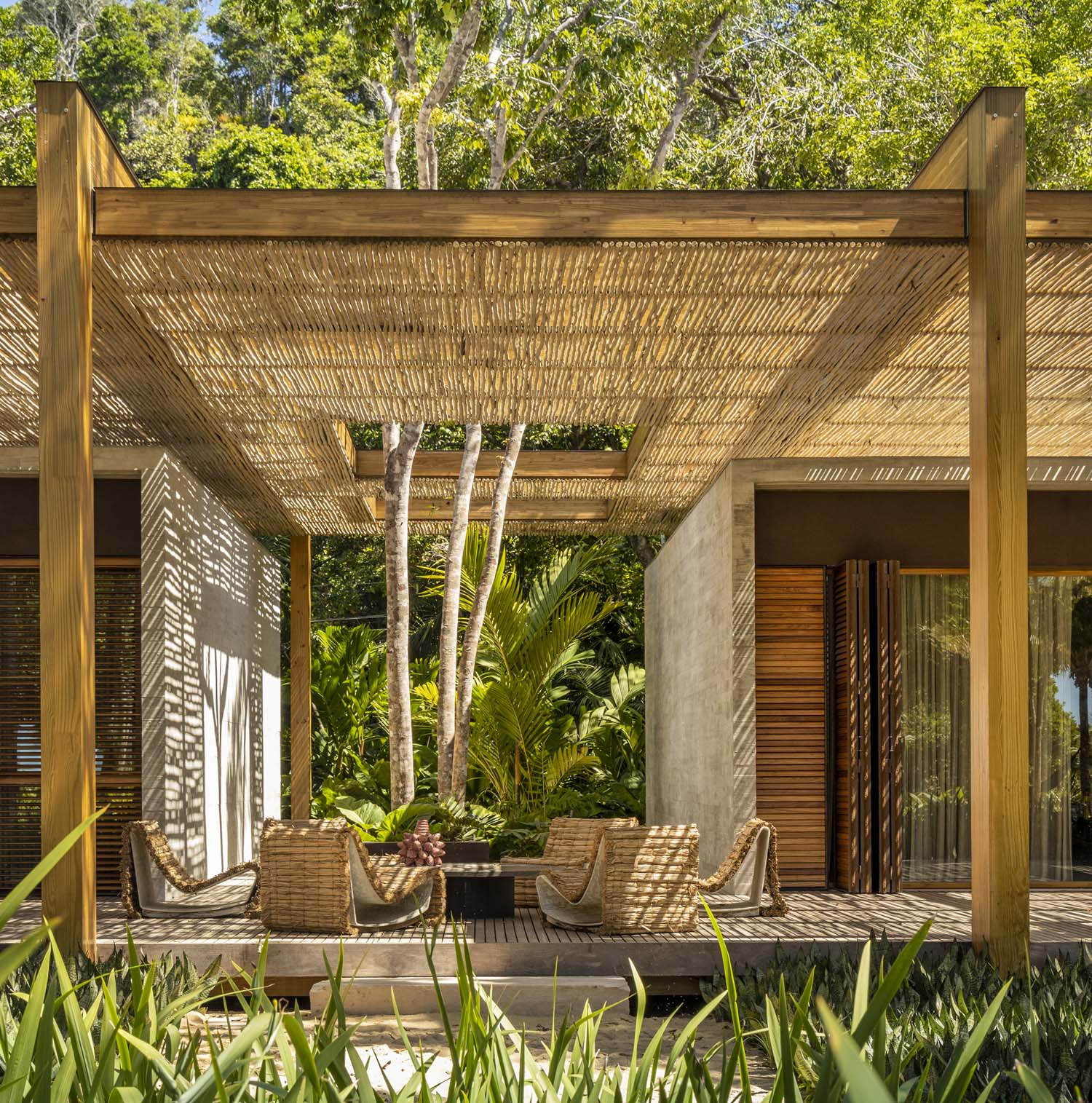 The continuity of the twelve rectangular openings in the canopy is interrupted by several trees that are embraced by the deck. Fernando Guerra