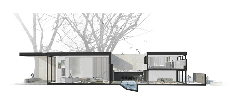 Section Rendering Sparano + Mooney Architecture}