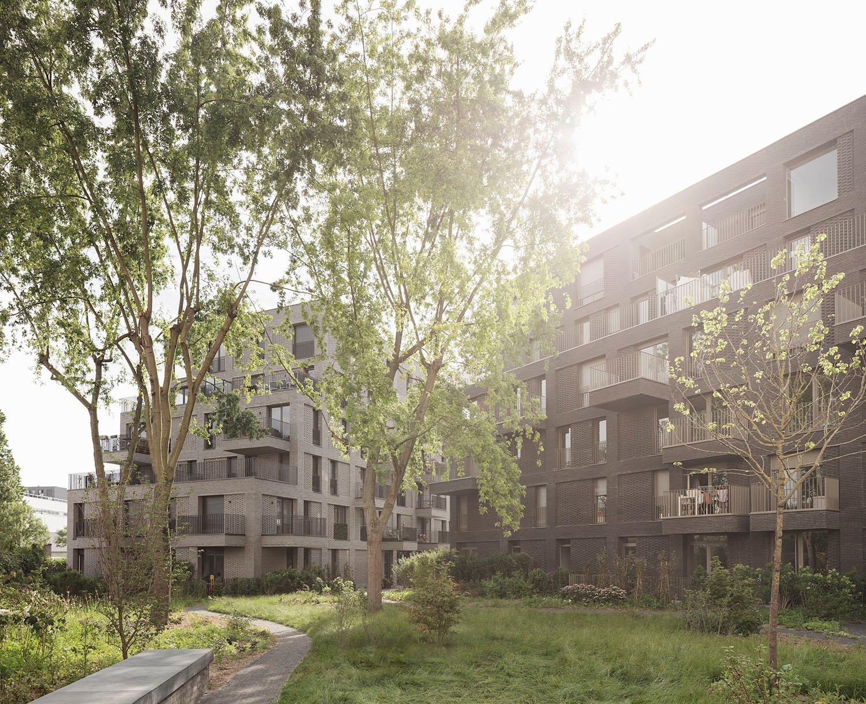 VIEW FROM THE GARDEN Schnepp Renou