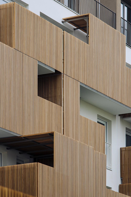 le terrazze ed il legno (dettaglio) Stefano Anzini