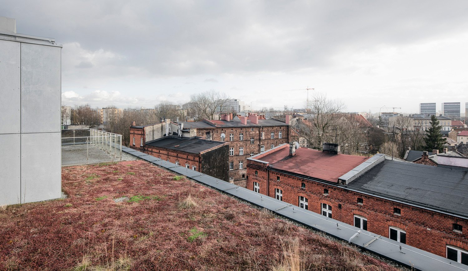 Oppositely to the surrounding area, all Baildomb roofs are covered with greenery Juliusz Sokolowski
