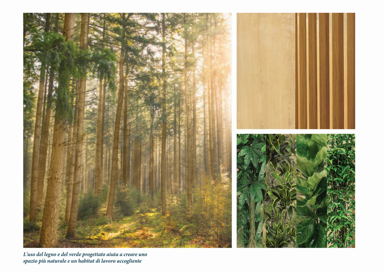 Legno e vegetazione per un ambiente accogliente e sostenibile Diele Kerciku Architetture}