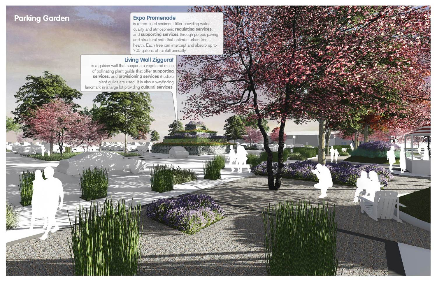 Parking Garden: a tree-lined sediment filter improves water quality and tree health. University of Arkansas Community Design Center