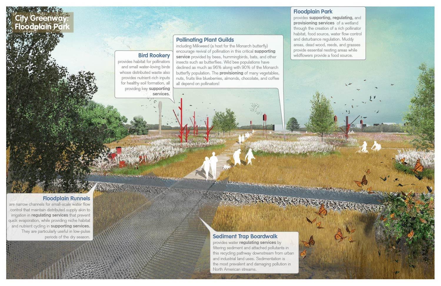 Floodplain Park: is a wetland that provides rich pollinator habitat and water flow control. University of Arkansas Community Design Center