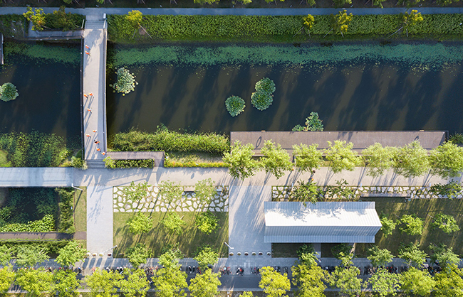 The canal along the runway is fringed with rows of Salix babylonica, linear waterfront platforms, and wetland ledges treating street runoff and offering marine habitats. Insaw Photography