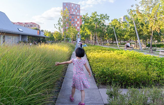 Seasonal effects and resting spaces attract people of all ages from surrounding communities. All plants in the park are native to Yangtze River Delta. Insaw Photography