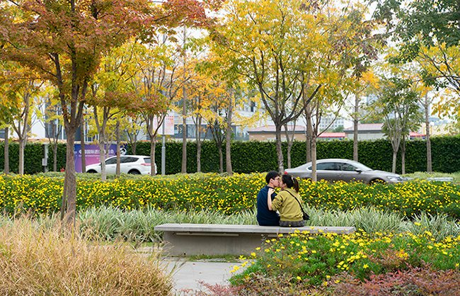 The peaceful setting of the park offers rare opportunities for people to enjoy intimate moments in the public realm of a high-density urban district. Insaw Photography