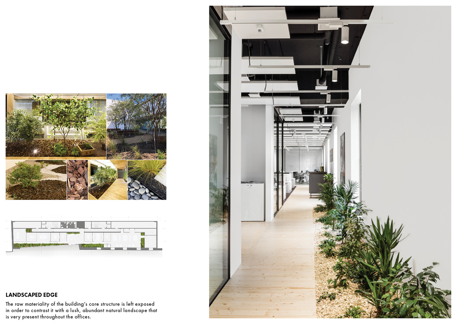 The raw materiality of the building's core structure is left exposed in order to contrast it with a lush, abundant natural landscape that is very present throughout the offices. Delphine Burtin}