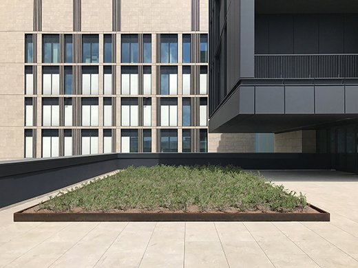 plans, volumes, materials EFA studio di architettura _ Photo
