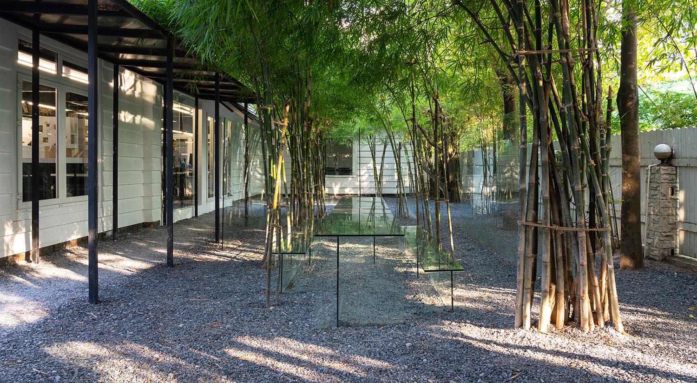Field of idea Trieu Chien