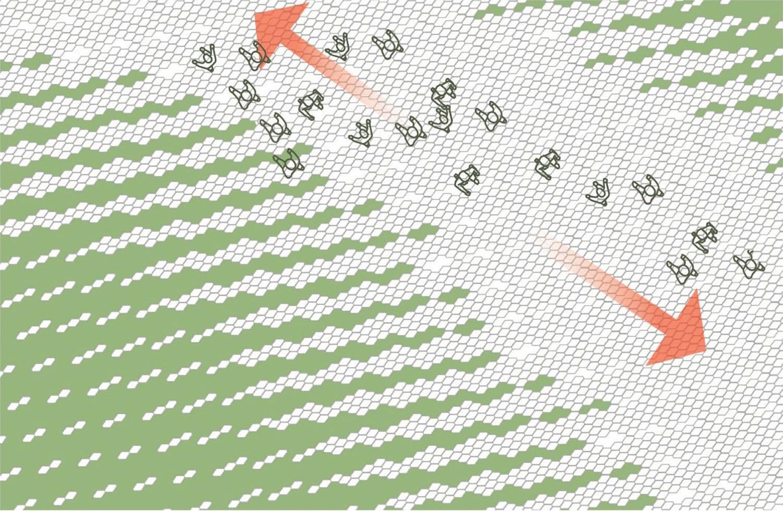 Paving Concept Diagram, Zaryadye Park Courtesy of Diller Scofidio + Renfro}