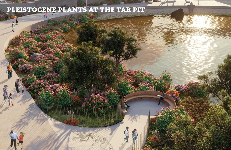 Pleistocene plants at the tar pit WEISS/MANFREDI