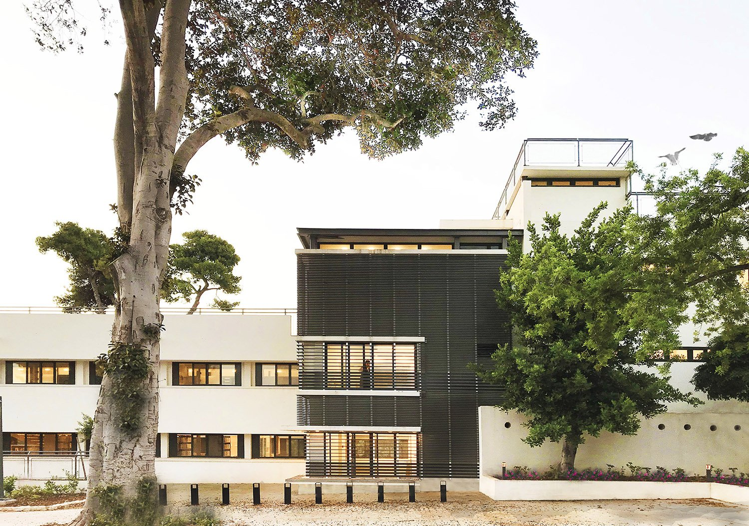 Ruth Liberty-Shalev Architecture & Conservation