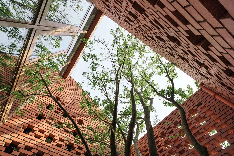 courtyard Terrence Zhang