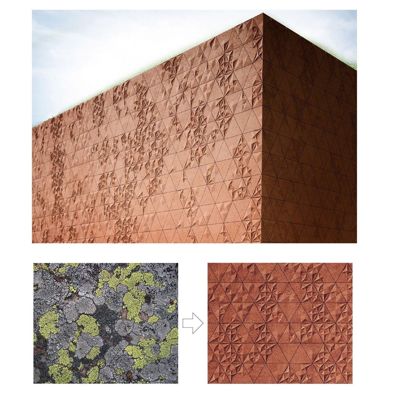 Lichen pattern study B & M Architects}