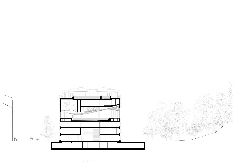 Section Berger+Parkkinen Architekten}