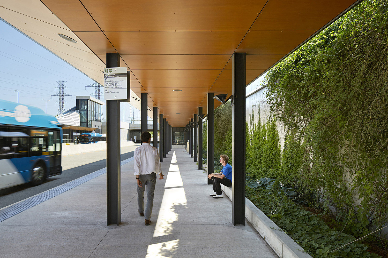 Mississauga Transitway_Living Wall at Submerged Station Ben Rahn/A-Frame Inc.}